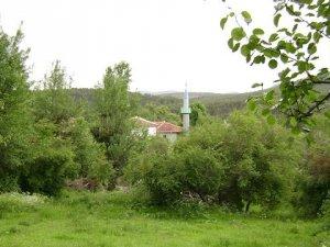 Eskişehir Çamlıca Köyü