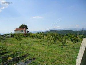 Tekirdağ Pınarca Köyü