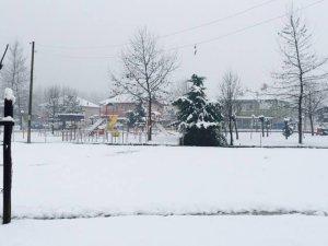 Düzce Taşköprü Köyü