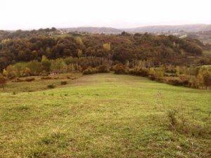 Sinop Dolay Köyü
