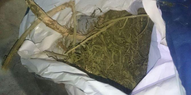 Malatya'da Uyuşturucu Operasyonu: 8 Tutuklama
