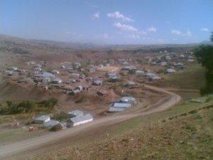 Muş Aligedik Köyü
