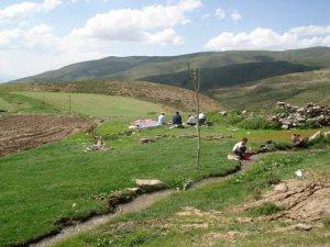 Muş Arıköy