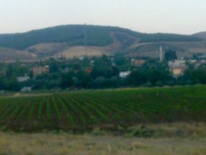 Osmaniye Alahanlı Köyü
