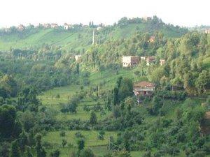 Rize Dernek Köyü