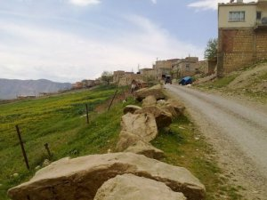 Siirt Çınarlısu Köyü