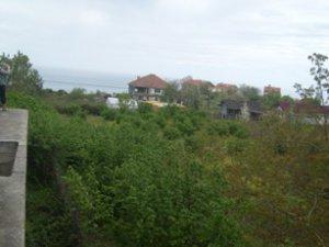 Sinop Ağaçlı Köyü