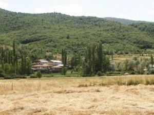 Tokat Arısu Köyü
