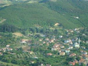 Yalova Tokmak Köyü
