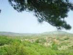 Yozgat Alemdar Köyü