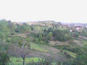 Zonguldak Bozca Köyü