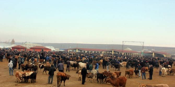 Ağrı'da Hayvan Üreticilerinden Et Fiyatlarının Düşmesine Tepki