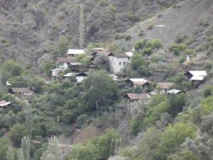 Artvin Dikmenli Köyü