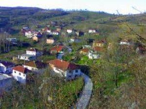 Düzce Asar Köyü