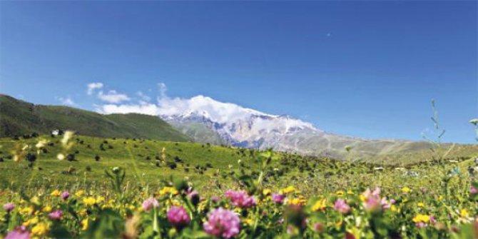 Ağrı Taşlıçay Yankaya Köyü