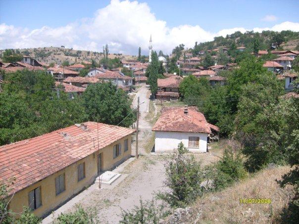 Amasya Gümüşhacıköy Bademli Köyü