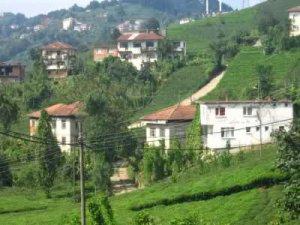 Rize Beştepe Köyü