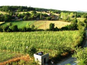 Sinop Alasökü Köyü