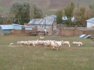 Sivas Apa Köyü