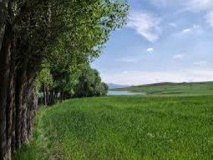 Tokat Akın Köyü