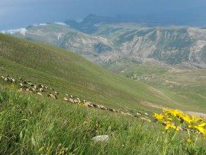 Erzurum Olur Kekikli Köyü