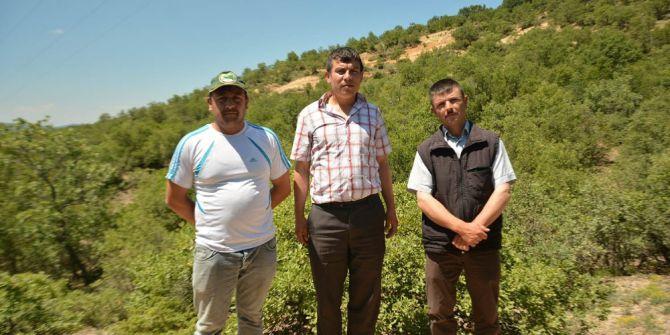 Satılık Köy Kaberleri Vatandaşı Rahatsız Etti