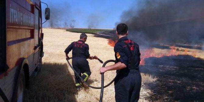 Anız Yangınında Ağaçlar Ve Elektrik Direkleri Yandı