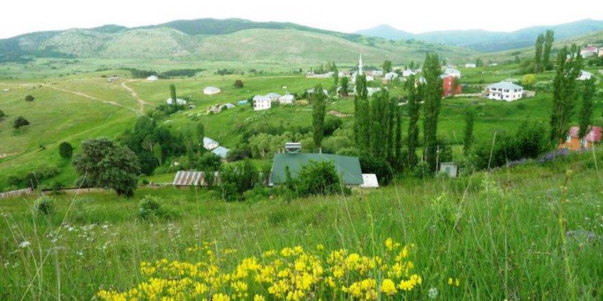 Giresun Alucra Fevzi Çakmak Köyü