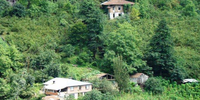 Artvin Borçka Yeşilköy Köyü