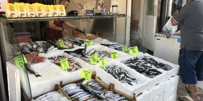 Balık tezgahlarında palamut 5 liraya düştü