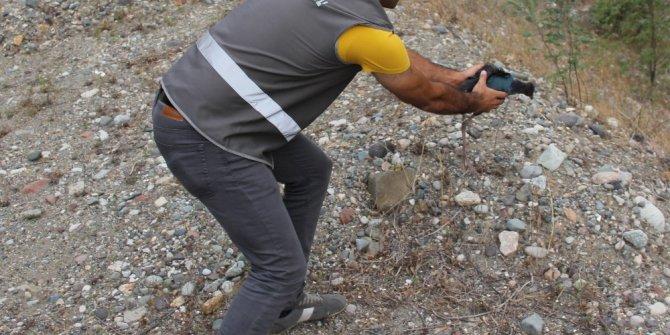 Artvin'de tedavi altına alınan Saz Horozu doğal yaşama bırakıldı