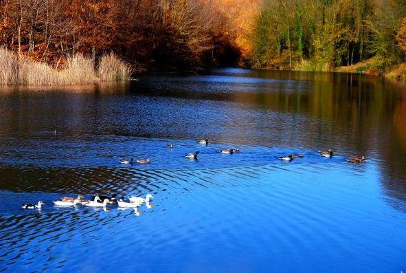 Saklı Göl Hangi İlimizdedir?