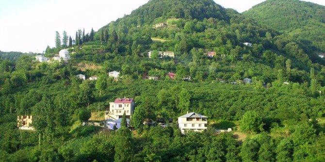 Akçaabat Sarıca Köyü