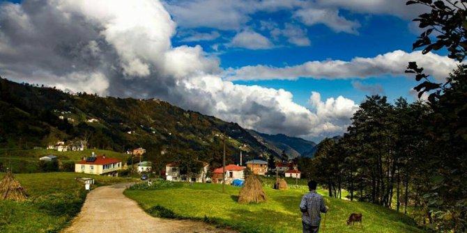 Akçaabat Söğütlü Köyü