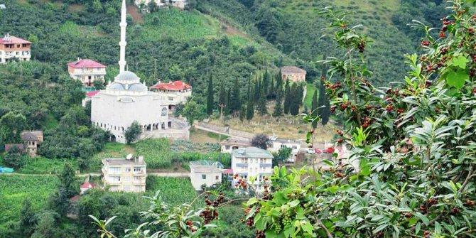Akçaabat Uçarsu Köyü