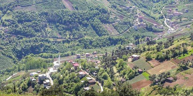 Akçaabat Zaferli Köyü