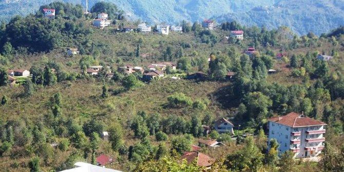 Araklı Ayvadere Köyü