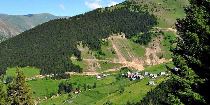 Araklı Bahçecik Köyü