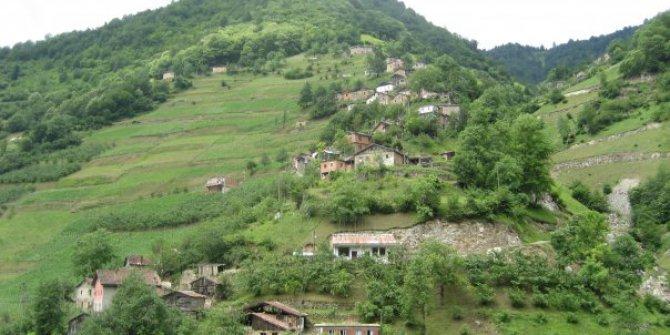 Araklı Çiftepınar Köyü