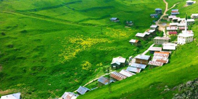 Araklı Sulakyurt Köyü