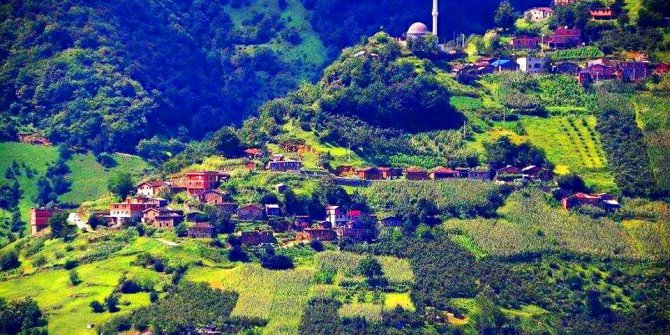 Araklı Sularbaşı Köyü