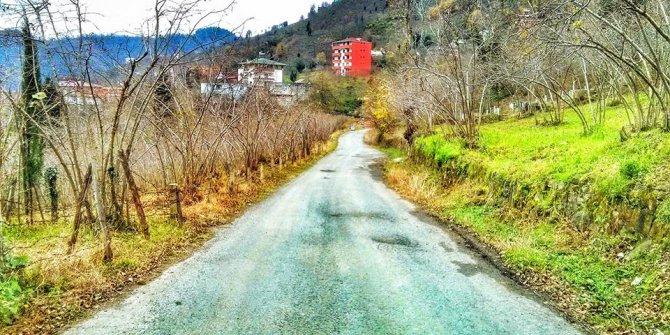 Arsin Yolüstü Köyü