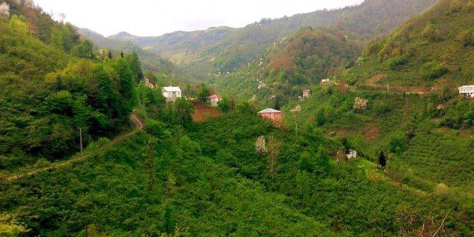 Beşikdüzü Ardıçatak Köyü