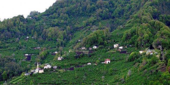Beşikdüzü Bozlu Köyü