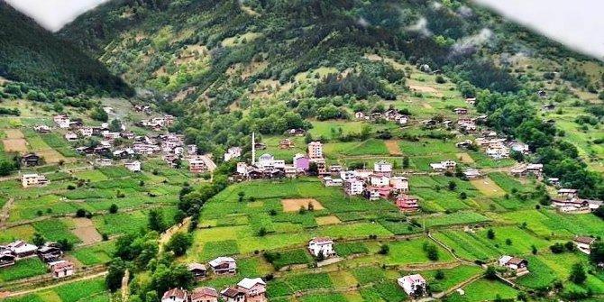 Çaykara Köknar Köyü