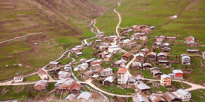 Köprübaşı Arpalı Köyü