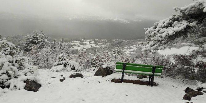 Mengen Ağacalar Köyü