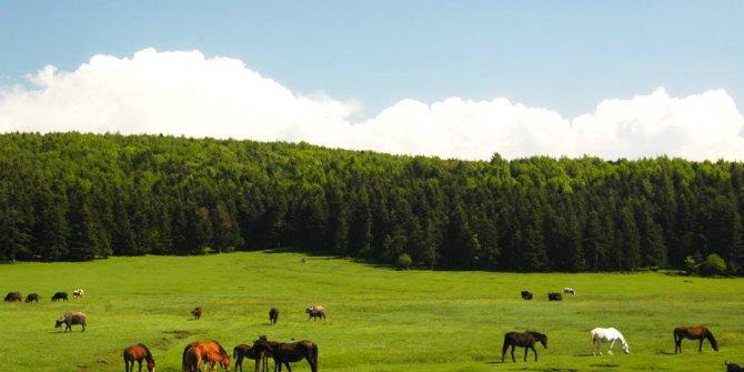 Bolu Kızılağıl Köyü