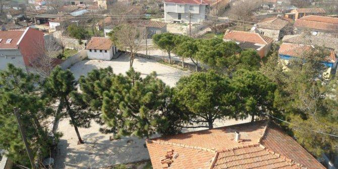 Enez Hasköy