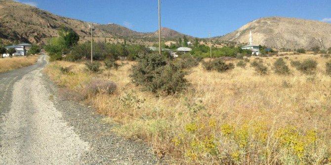 Suşehri Arpayazı Köyü